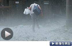 東京都三鷹市や調布市などでひょうが降り積もった(24日)