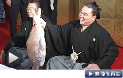 「横綱の自覚を持ち、全身全霊で相撲道に精進」 横綱昇進を決めた日馬富士(26日)