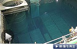 福島第1原発4号機の使用済み燃料プールが報道陣に公開された(テレビ東京)